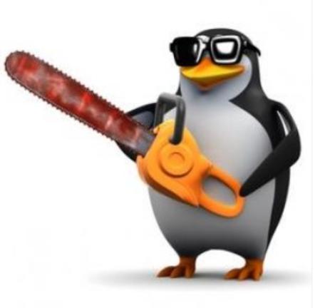 penguenin seo deneyimi